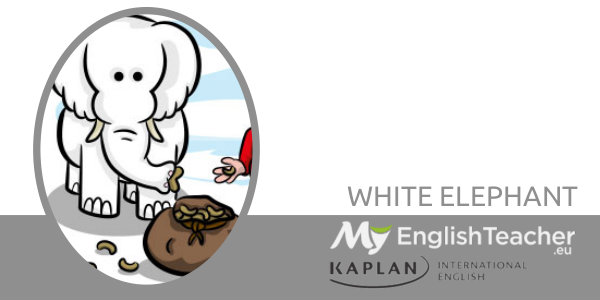 WHITE ELEPHANT color idiom