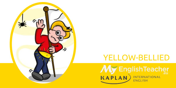 YELLOW-BELLIED color idiom