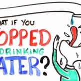 What Happens if You Don't Drink Enough Water Daily