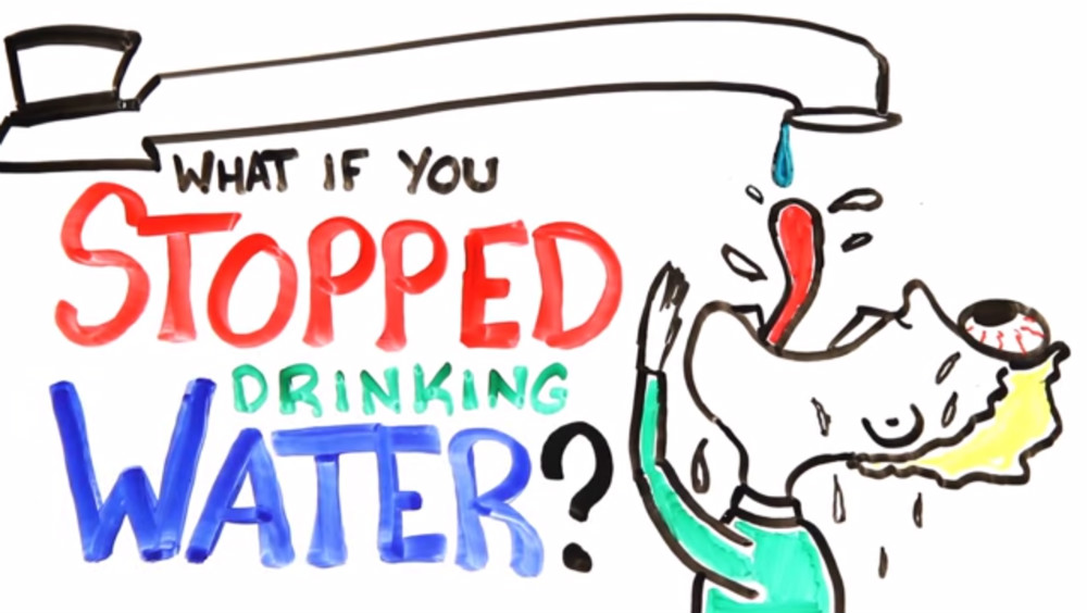 If You Don T Drink Enough Water What Can Happen