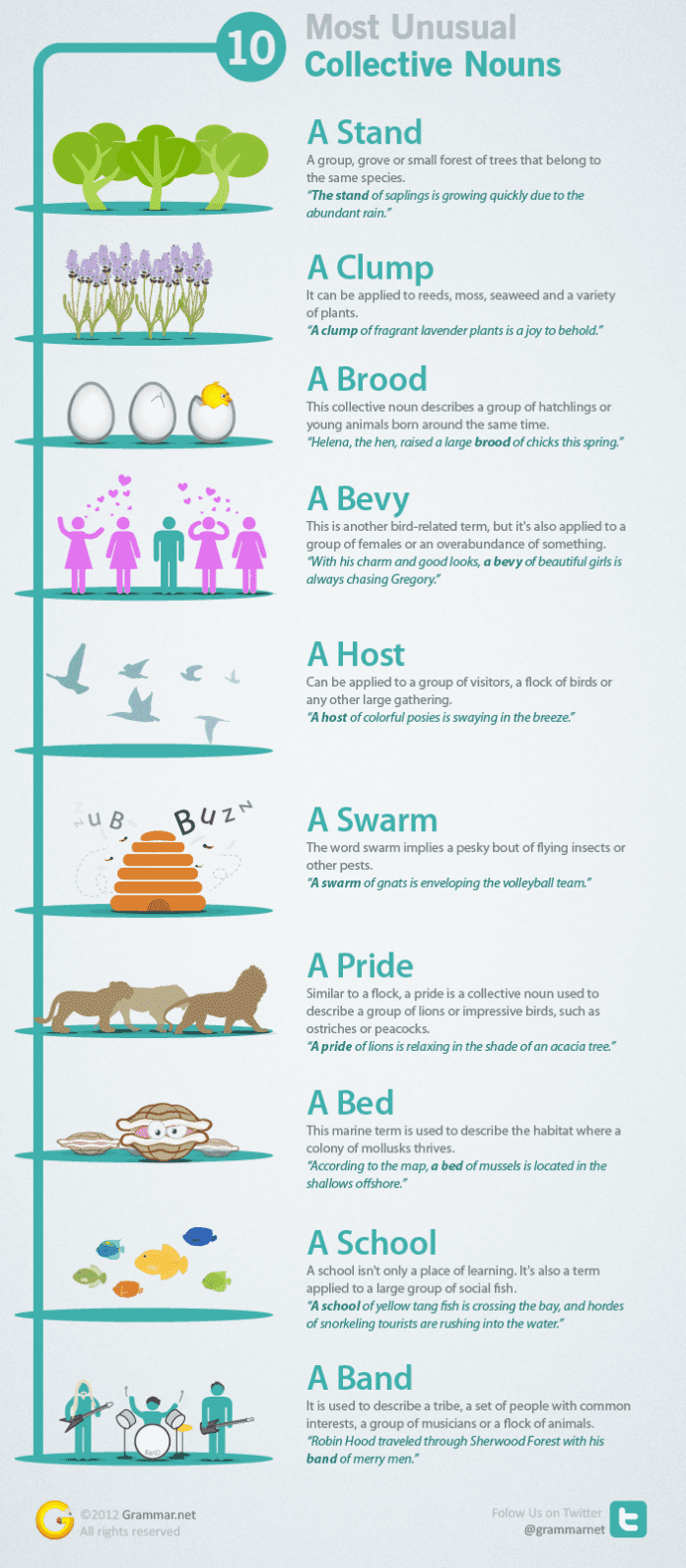 10 Collective Nouns Infographic with Explanaition