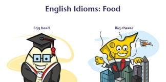 English Idioms about food