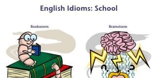 idioms related school