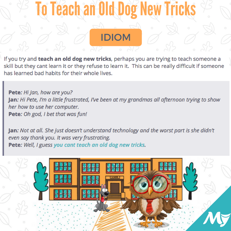 to-teach-an-old-dog-new-tricks-meaning