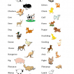 names of baby animals and their parents