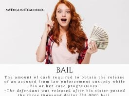 bail meaning