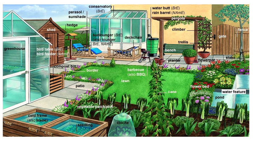 Garden Vocabulary