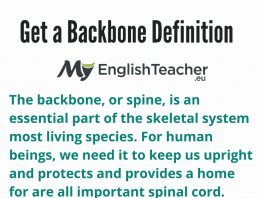 Get a Backbone Definition