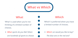 what vs which
