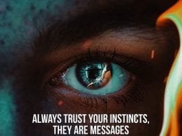 always trust your instincts, they are messages from your soul