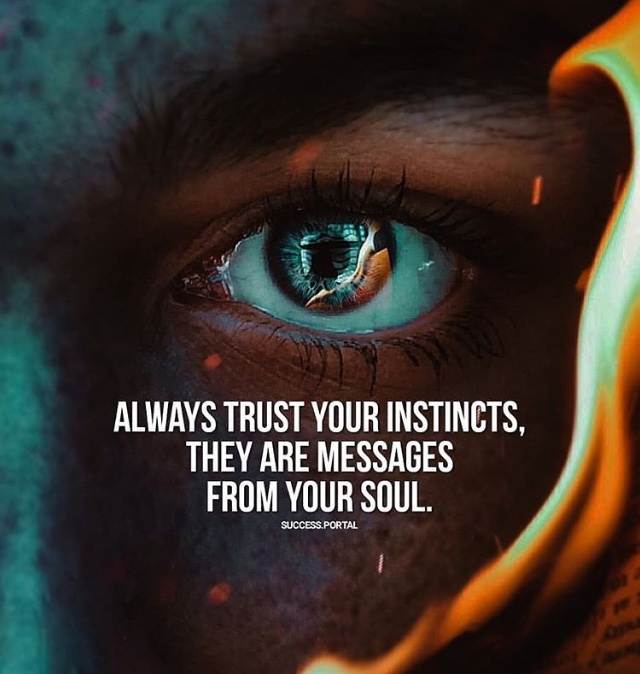 2 Life Quotes You Want To Follow Always Trust Your Instincts