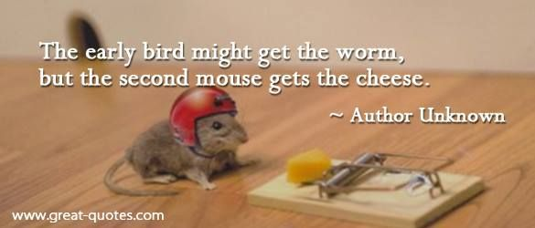 the second mouse gets the cheese