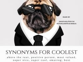 synonyms for coolest